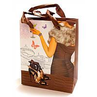 "Пакет подарочный картон ""Туфельки"" (14х7х17 см)"