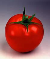 Семена томата Таня F1 1000 сем.Семинис.