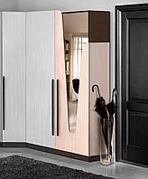 Шкаф Арья 550 с зеркалом, фото 1