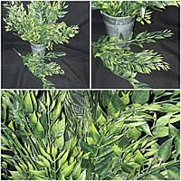 Интерьерные листья акации из пластика, выс. 43 см., 35/25 (цена за 1 букет + 10 гр.)