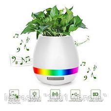 Умный музыкальный цветочный горшок TOKQI K3!Опт, фото 2