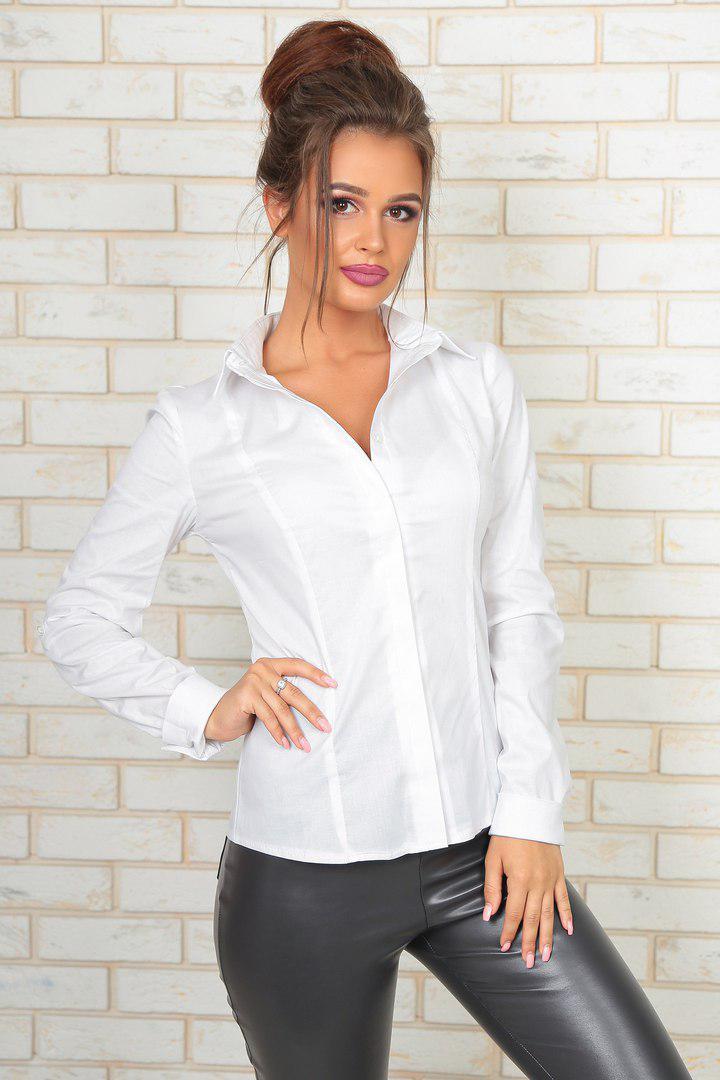 8e7baceafb1 Строгая офисная блуза рубашка на пуговицах белая и синяя Хлопок 100% размер  42 44 46