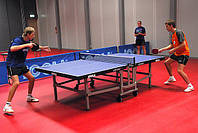 Спортивный линолеум  Omnisports V35 покрытие для школьных спортивных залов, фитнеса, настольного тенниса