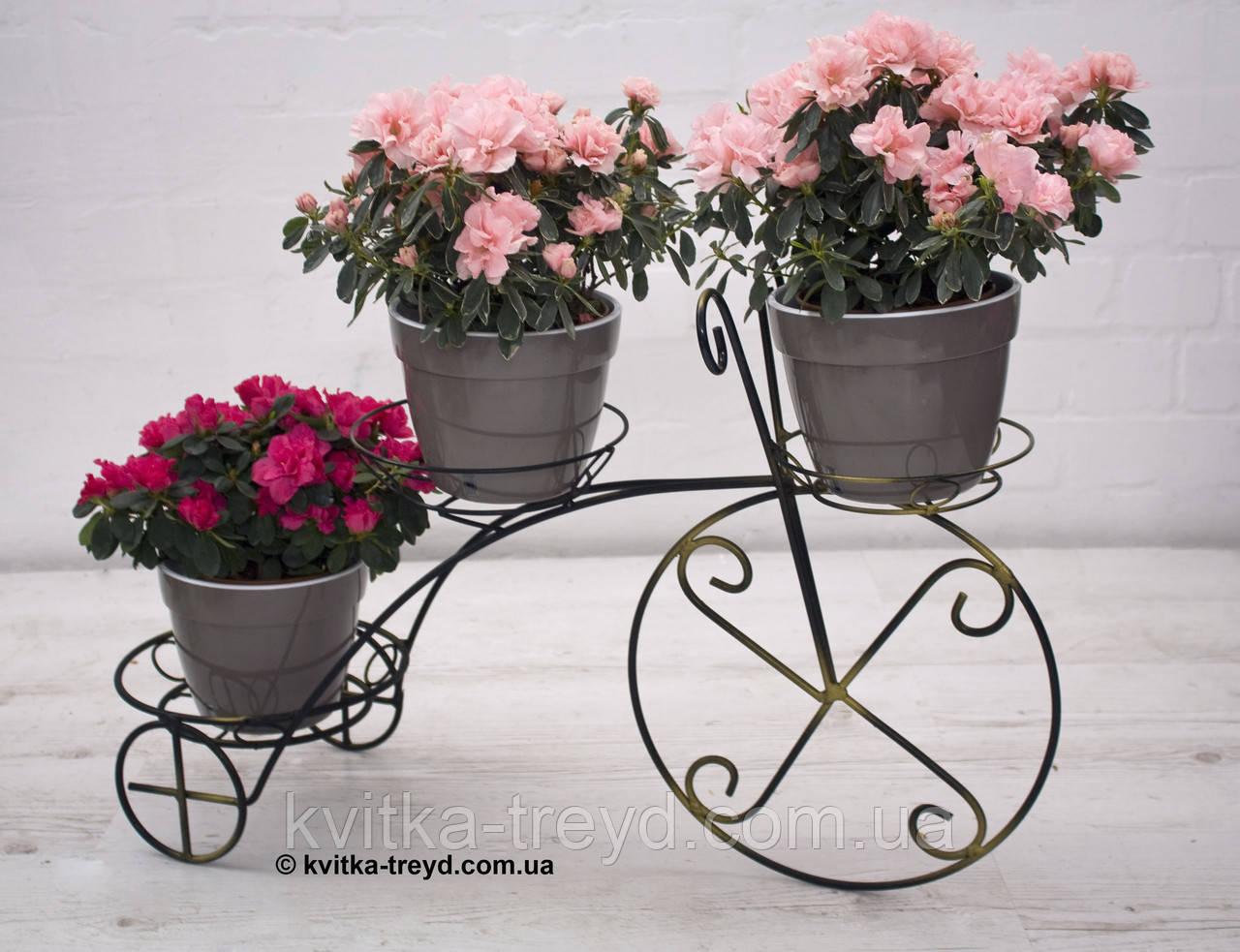 Кованая подставка для цветов Велосипед 3