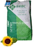 Насіння соняшнику Ауріс (під Гранстар 50г/га)/ВНІС/ Семена подсолнуха АУРИС под Гранстар
