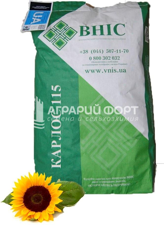 Семена подсолнуха Карлос 115 под Евро-Лайтнинг /Насіння  соняшника КАРЛОС 115 під Євро-Лайтнінг /ВНІС/