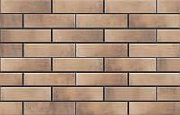 CerradRetro Brick Masala 65x245
