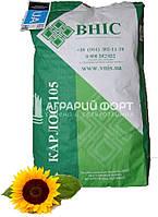 Насіння  соняшника Карлос 105 під Євро-лайтнінг /ВНІС/Семена подсолнуха под Евро-лайтинг