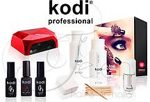 Набор Premium Kodi с гибридной лампой на 36 Вт