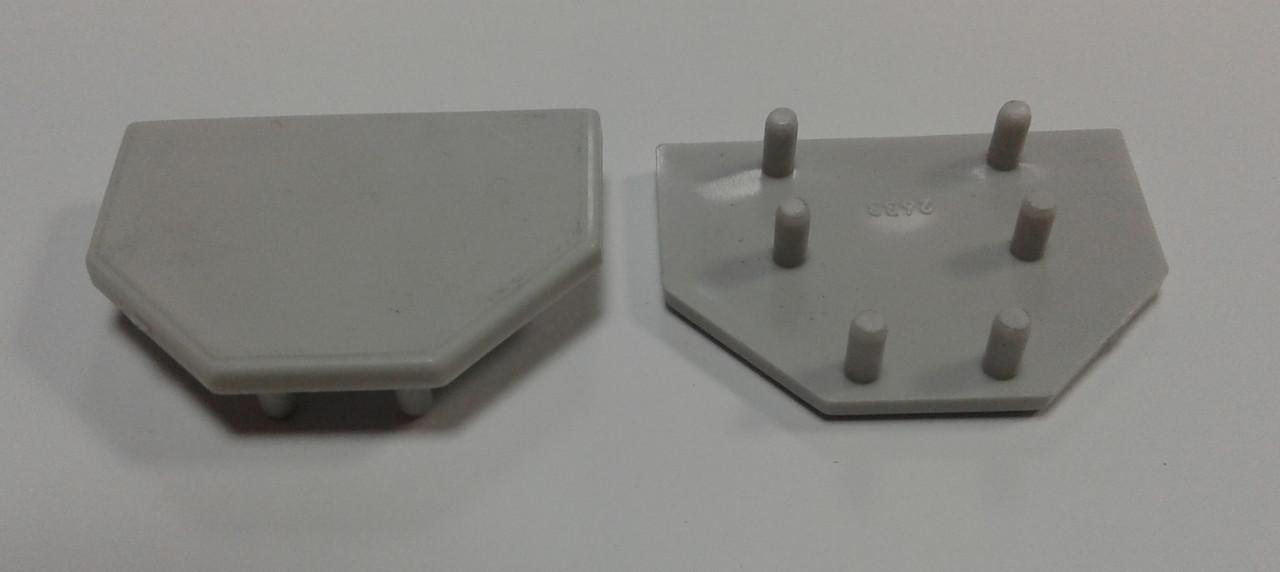 Заглушка торцевая для торгового  профиля. Модель 2633
