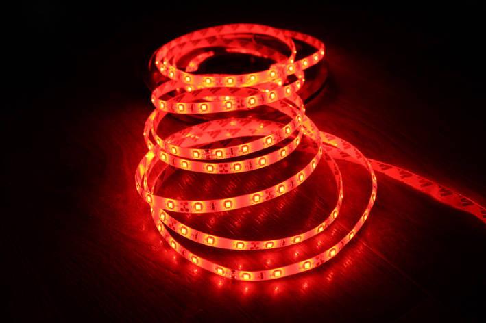 Светодиодная лента 3528-60 IP65 красный, фото 2