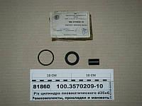 Р/к цилиндра пневматического d35х65 (ПААЗ) 100.3570209-10