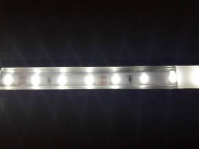 Светодиодная лента 3528-60 IP20 белый, фото 2