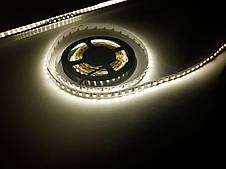 Светодиодная лента 3528-120 IP20 теплый белый, фото 2