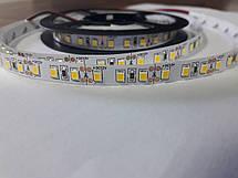 Светодиодная лента 3528-120 IP20 теплый белый, фото 3