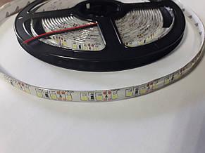 Светодиодная лента 3528-120 IP65 белый, фото 3
