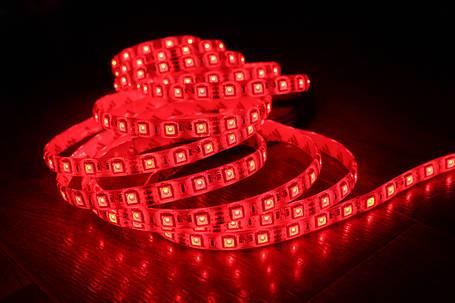 Светодиодная лента 5050-60 IP65 красный, фото 2