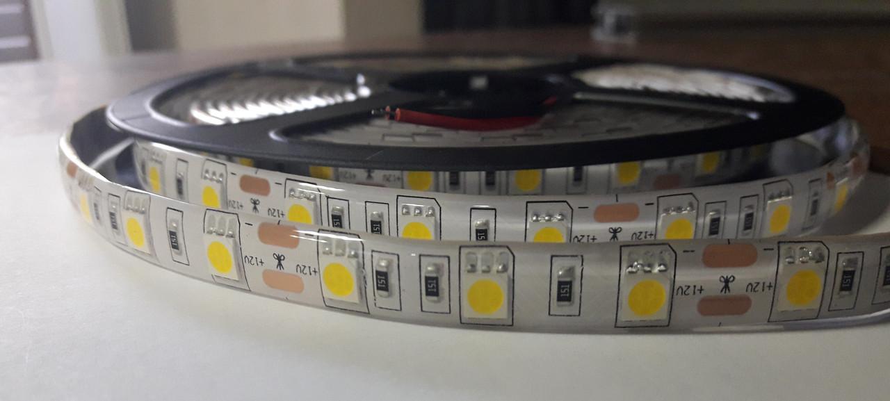 Светодиодная лента 5050-60 IP65 красный 2
