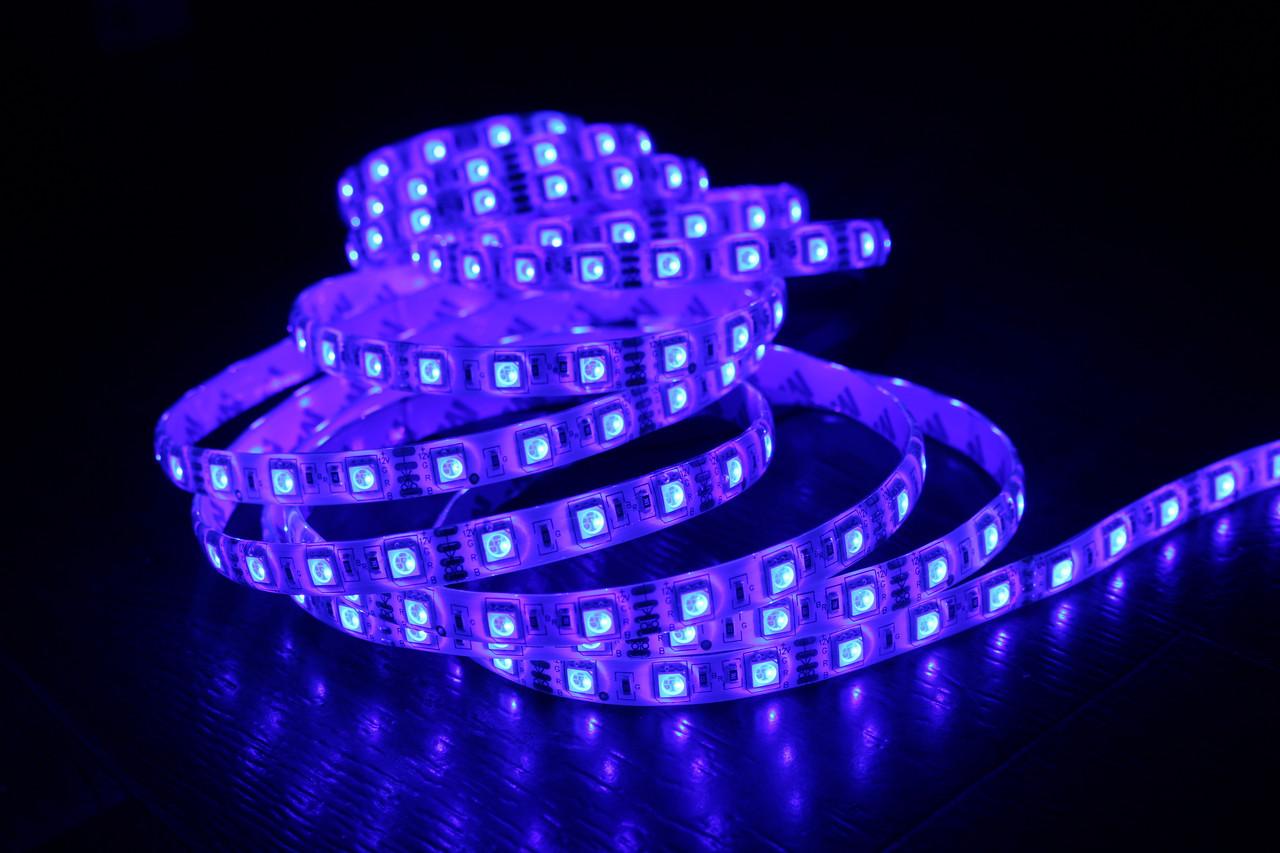 Светодиодная лента 5050-60 IP65 синий