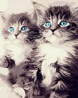"""Набор для рисования """"Голубоглазые котята"""" [40х50см, С Коробкой]"""