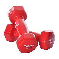 Гантели для фитнеса 1 кг Profi виниловые 2 шт.
