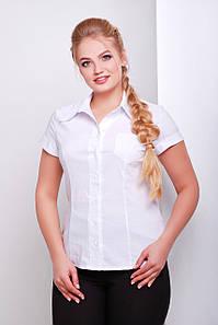 Женская белая блузка большого размера Марта-Б к/р