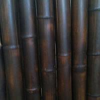 Бамбуковый ствол обожженый (шоколад )диаметр 4-5см. длина 3м.