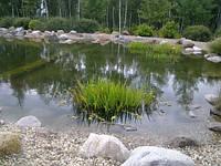 Устройство декоративных водоемов, прудов