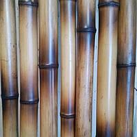 Бамбуковый ствол (декоротивный) 22-25мм длина 2,95м.