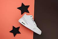 Кроссовки мужские Nike Air Jordan 3 / NR-AJM-035 (Реплика)
