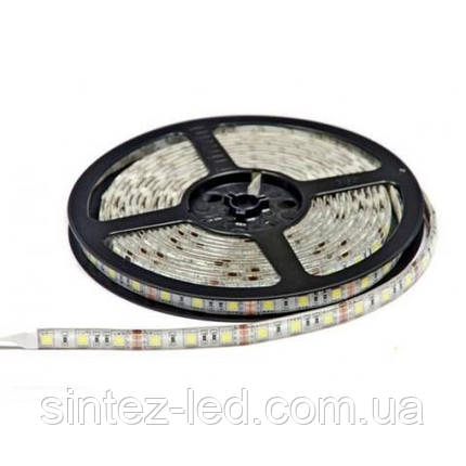 Светодиодная лента SMD 5050/60 12V белая 6400K IP44 Код.52415, фото 2