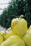 Перець солодкий Блонді F1 10шт (Syngenta) ТМ Добрі Сходи