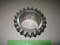 Шестерня вала первичного (Z=21) КПП МТЗ 1025 (производство  МТЗ). 80С-1701042. Ціна з ПДВ.