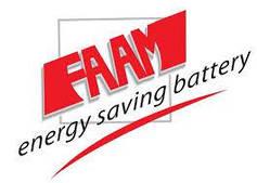 Герметизированные аккумуляторы FAAM