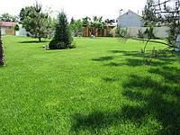 Создание посевного газона, укладка рулонного газона