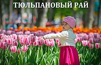 ТЮЛЬПАНОВЫЙ РАЙ. КИРОВОГРАДСКИЙ ДЕНДРОПАРК.