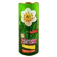 Набор для творчества БЦ-03 Бисерный Цветок Нарцисс Данко Тойс