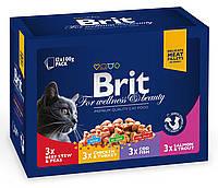 Brit Premium Cat pouch 100g *12шт - семейная тарелка ассорти 4 вкуса для кошек  ( 100278 /506255 ), фото 2