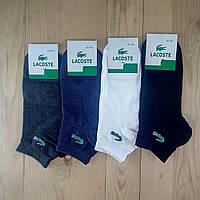 """Мужские носки демисезонные """"Lacoste"""" Турция 41-45р НМД-05682"""