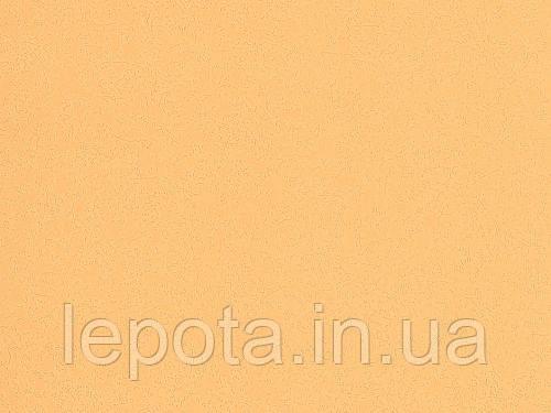 Обои супер мойка B49.4 Радуга 5580-12, фото 2