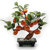 Дерево мандарин 12 плодов 25х20х12 см