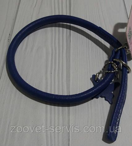 Кожаный ошейник для собакCollar Glamour круглый 3506, фото 2
