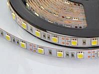 LED лента smd 5050 IP20 60led/m,12Lm 14.4w/m белая