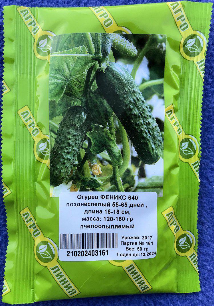 Семена огурца 50 гр сорт Феникс 640 ТМ Агролиния