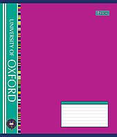 Тетрадь ученическая А5/12 кл. 1В OXFORD Фоновая -17, 795057