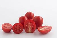 МЕТРО F1 / METRO F1 – томат детерминантный, Nunhems 1 000 семян