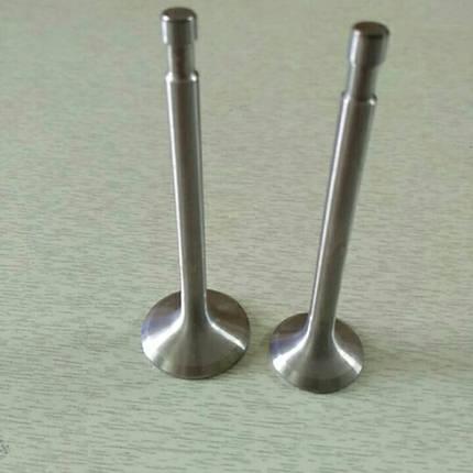 Клапана пара R175, R180, фото 2