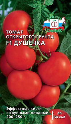 томат душечка фото отзывы
