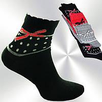 Носки женские Calze Moda  женские, котоновые, цвета в ассортименте