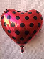 """Фольгированные шары """"Сердечки"""" 16"""" (40 см) красные в черный горошек"""